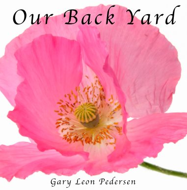 Our Back Yard book cover