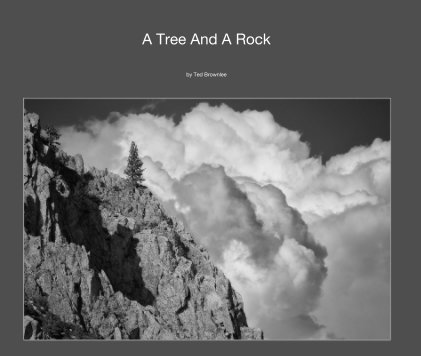 A Tree And A Rock book cover