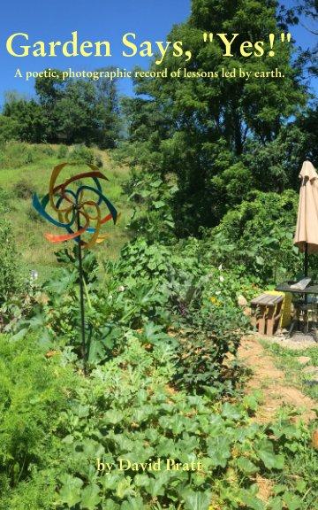 View Garden Says Yes by David Pratt