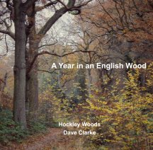 A Year in an English Wood. book cover