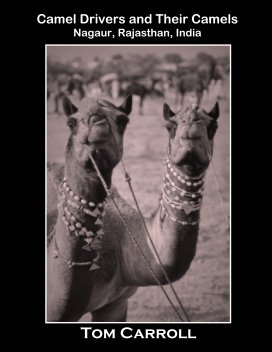 Camel Drivers and Their Camels book cover