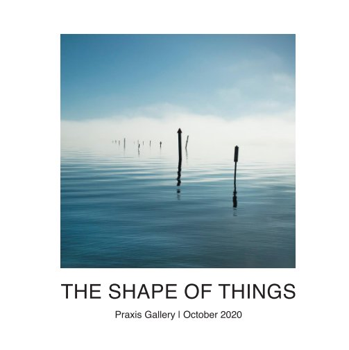 View The Shape of Things by Praxis Gallery
