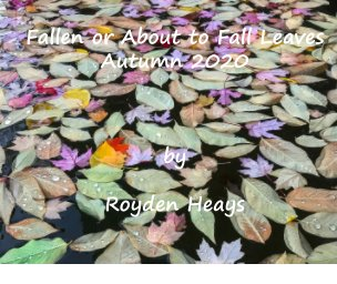 Fallen or about to Fall Leaves book cover