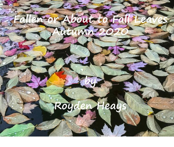 Ver Fallen or about to Fall Leaves por Royden F. Heays