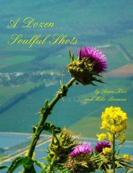 A Dozen Soulful Shots book cover