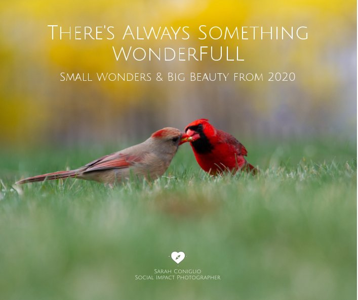 View There's Always Something WonderFULL by Sarah Coniglio