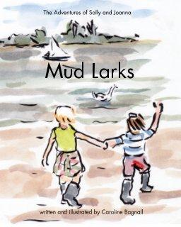 Mud Larks book cover