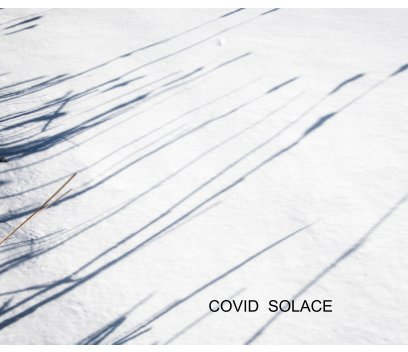 Covid Solace book cover