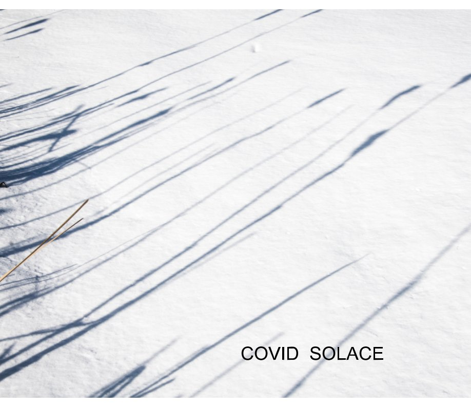 View Covid Solace by J. Graham Downer