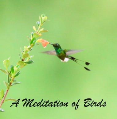 A Meditation of Birds  (3) book cover