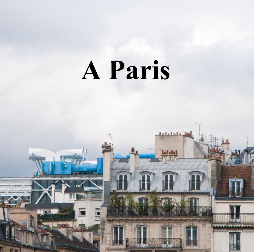 Ver A Paris por Sylvaine Sancton