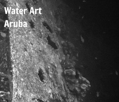 Turtles of Aruba book cover