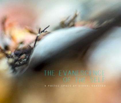 The Evanescence of The Self book cover