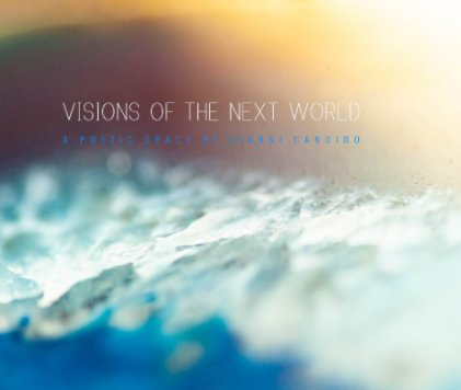 Visions of The Next World book cover