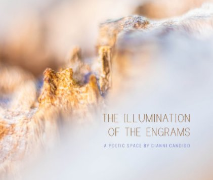 The Illumination of The Engrams book cover