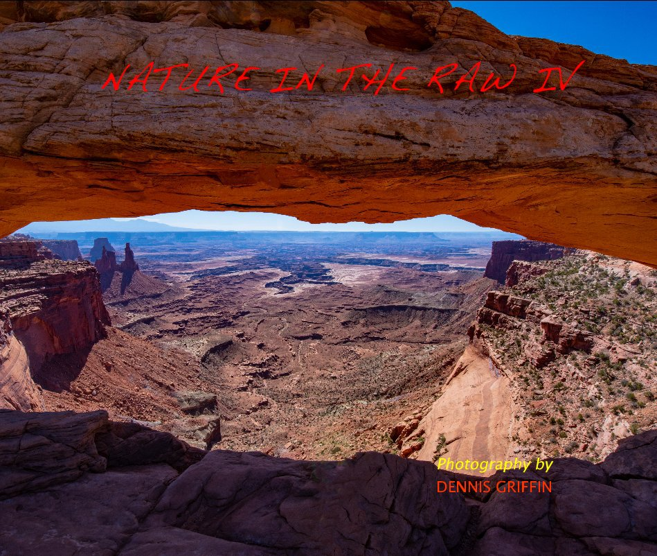 View Nature In The Raw IV by Dennis Griffin