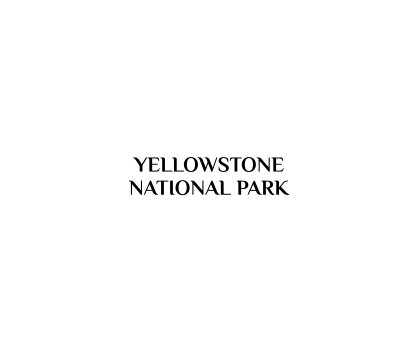 Yellowstone 2020 book cover