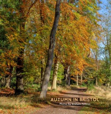 Autumn in Bristol book cover
