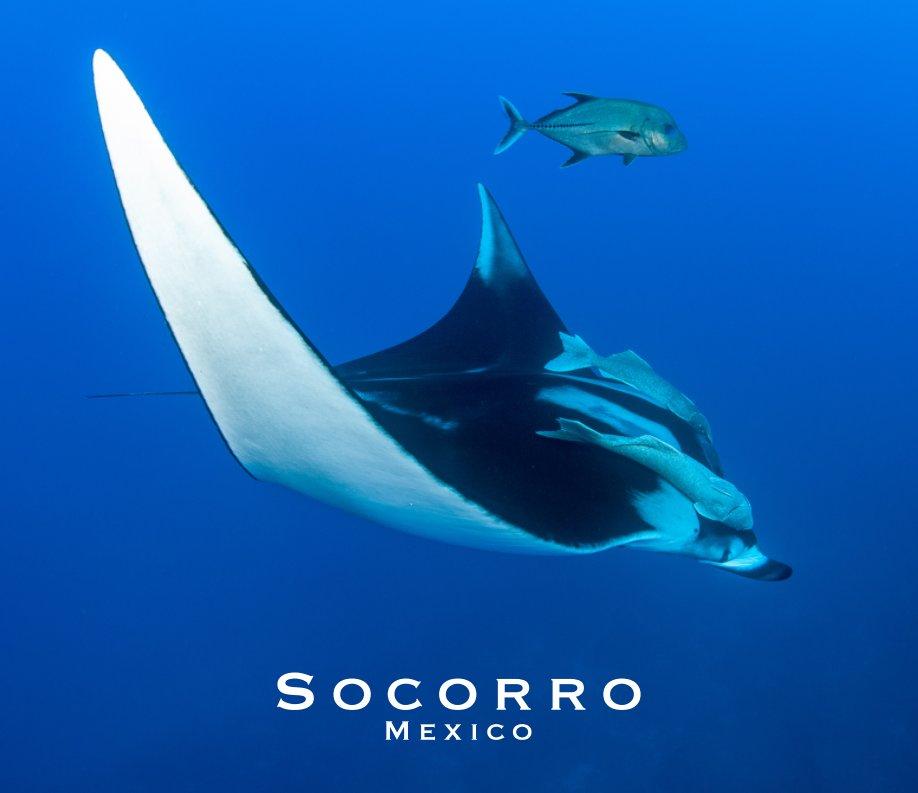 Visualizza 2018 Socorro Islands Mexico ed1 di Neil Vincent