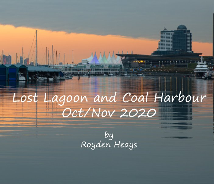 View Lost Lagoon and Coal Harbour by Royden F. Heays