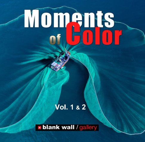 View Moments of Color 2020 Vol. 1 - 2 by Blank Wall Gallery