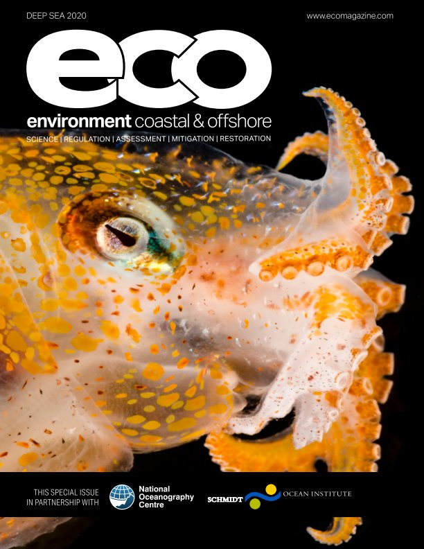 View ECO Magazine 2020 Deep Sea by Technology Systems Corp