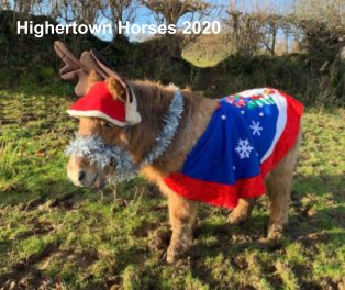 Highertown Horses 2020 book cover
