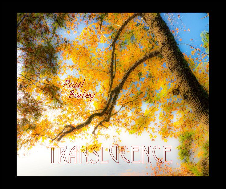 View Translucence by PAUL BAILEY