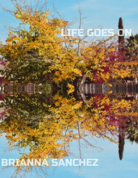 Life Goes On book cover