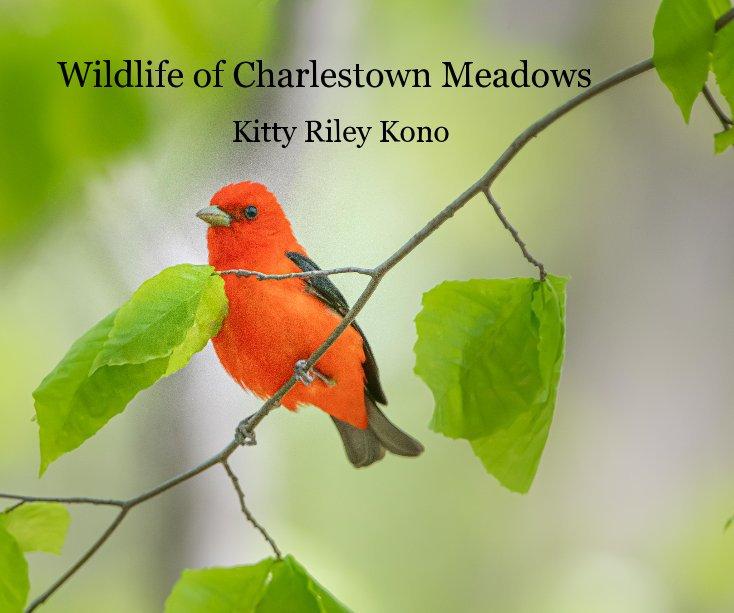 View Wildlife of Charlestown Meadows by Kitty Riley Kono