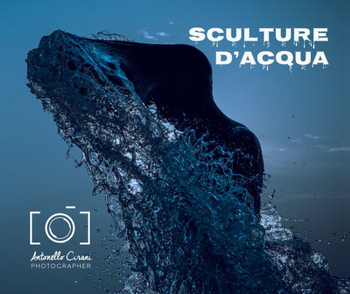 Visualizza Sculture d'acqua di Antonello Cirani