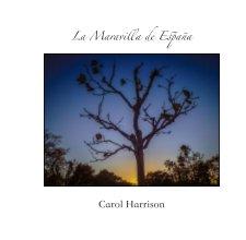La Maravilla de Espana book cover