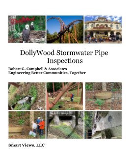 DollyWood Stormwater Pipe Inspections book cover