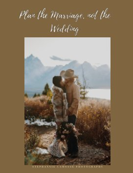 Plan the Marriage book cover