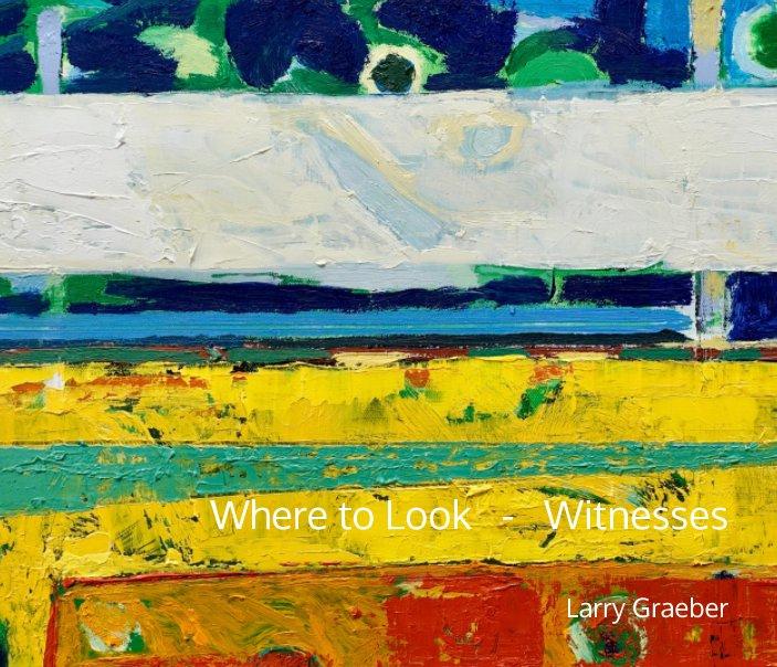 View Where to Look by Larry Graeber