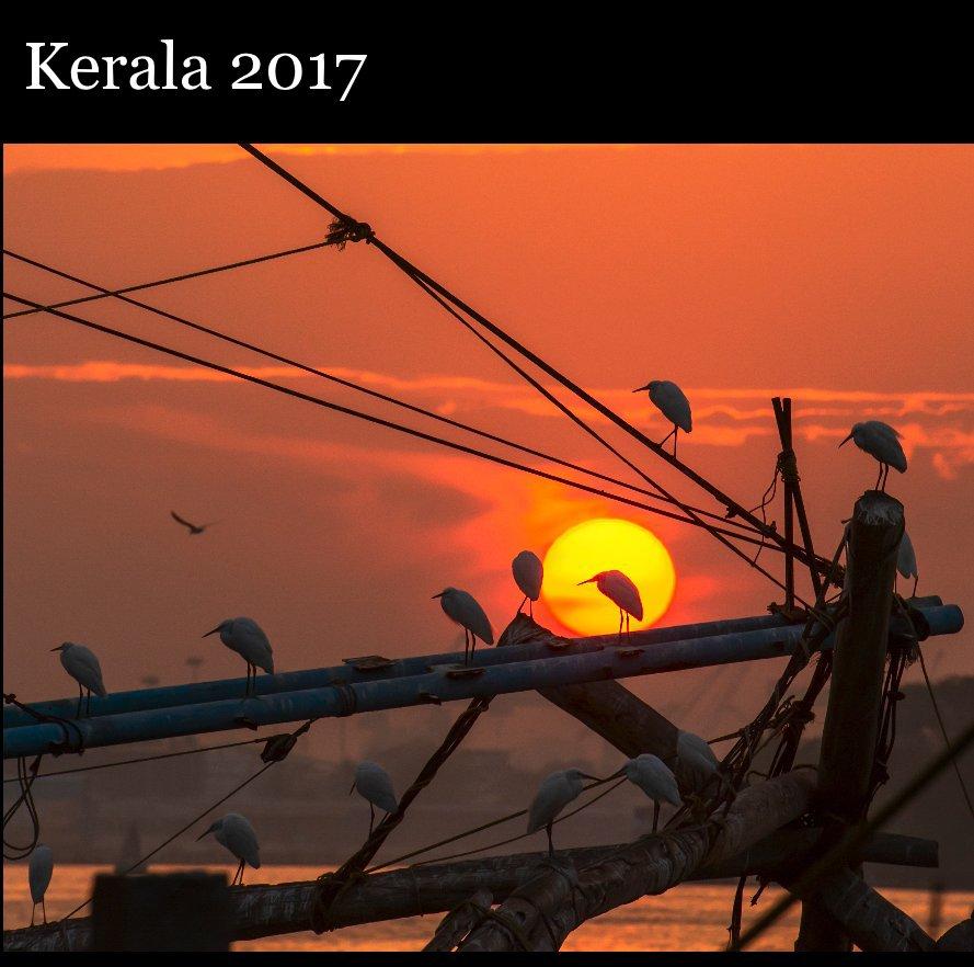 View Kerala 2017 by Riccardo Caffarelli