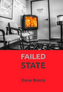 Failed State book cover