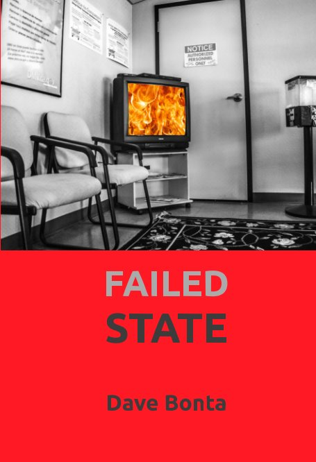 View Failed State by Dave Bonta