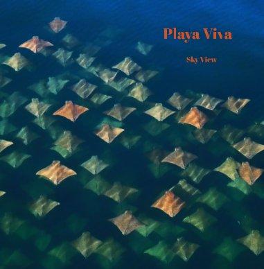 Playa Viva - Sky View 12x12 book cover