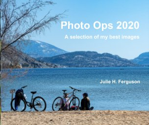 Photo Ops 2020 book cover