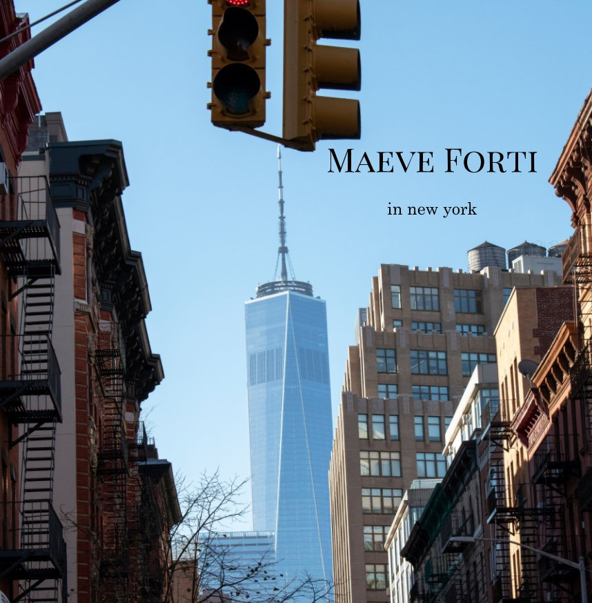 View in new york by Maeve Forti
