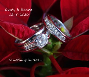 Cindy and Brenda 12-5-2020 Something in Red book cover
