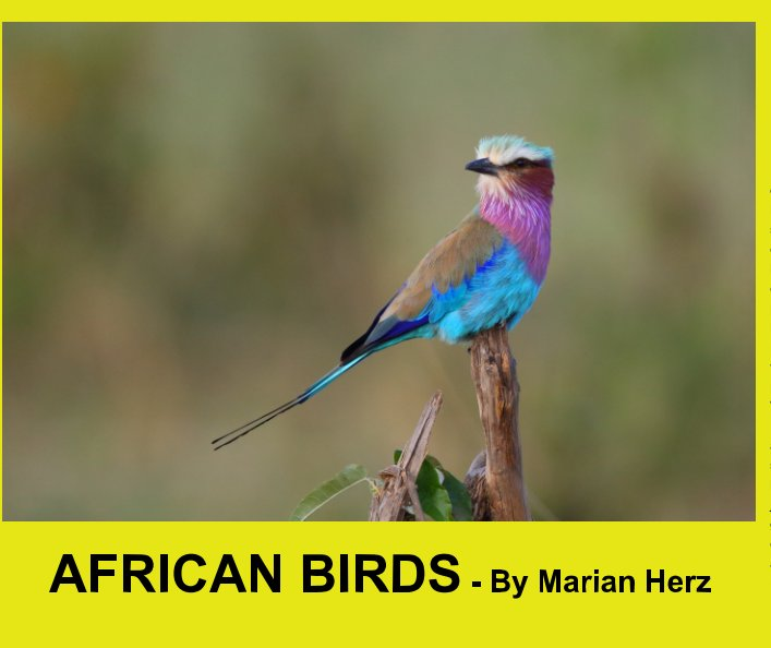 View Visions From My travels - African Birds by Marian Herz