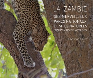 La Zambie book cover