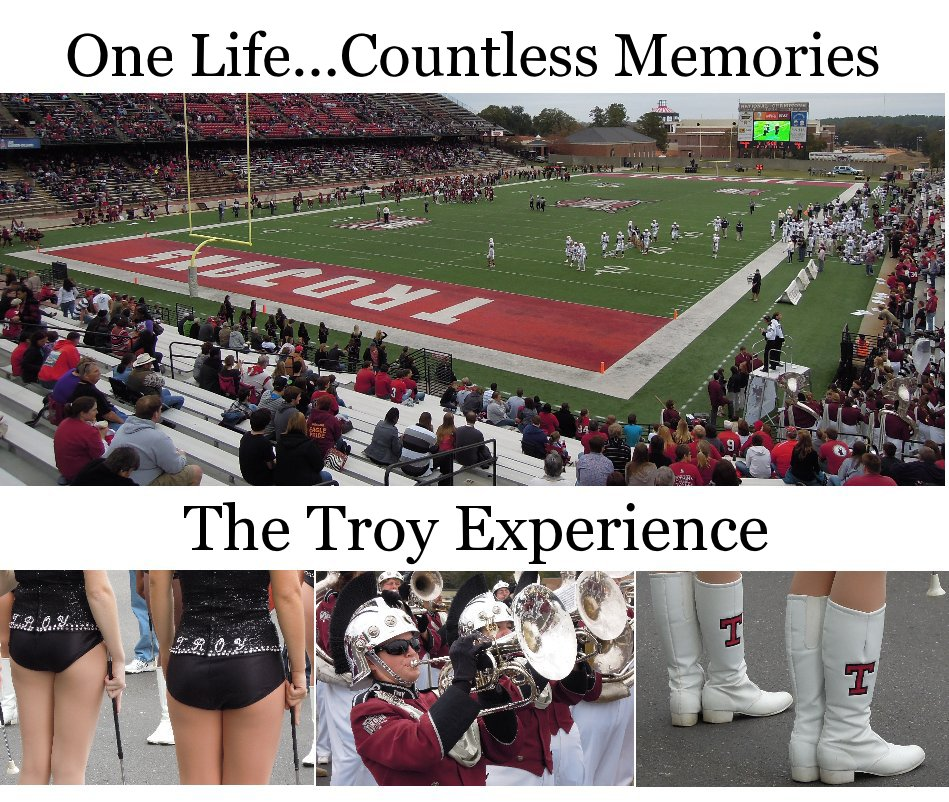 View The Troy Experience by Chris Shaffer