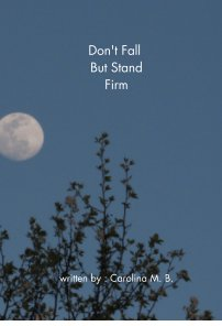 Don't Fall But Stand Firm book cover