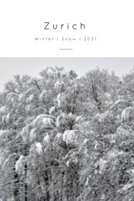 Winter Zurich book cover