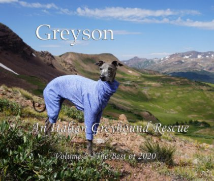 Greyson An Italian Greyhound Rescue book cover