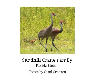 Sandhill Crane Family book cover