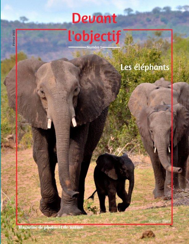 View Devant l'objectif #1 : Les éléphants by Olivier Bart